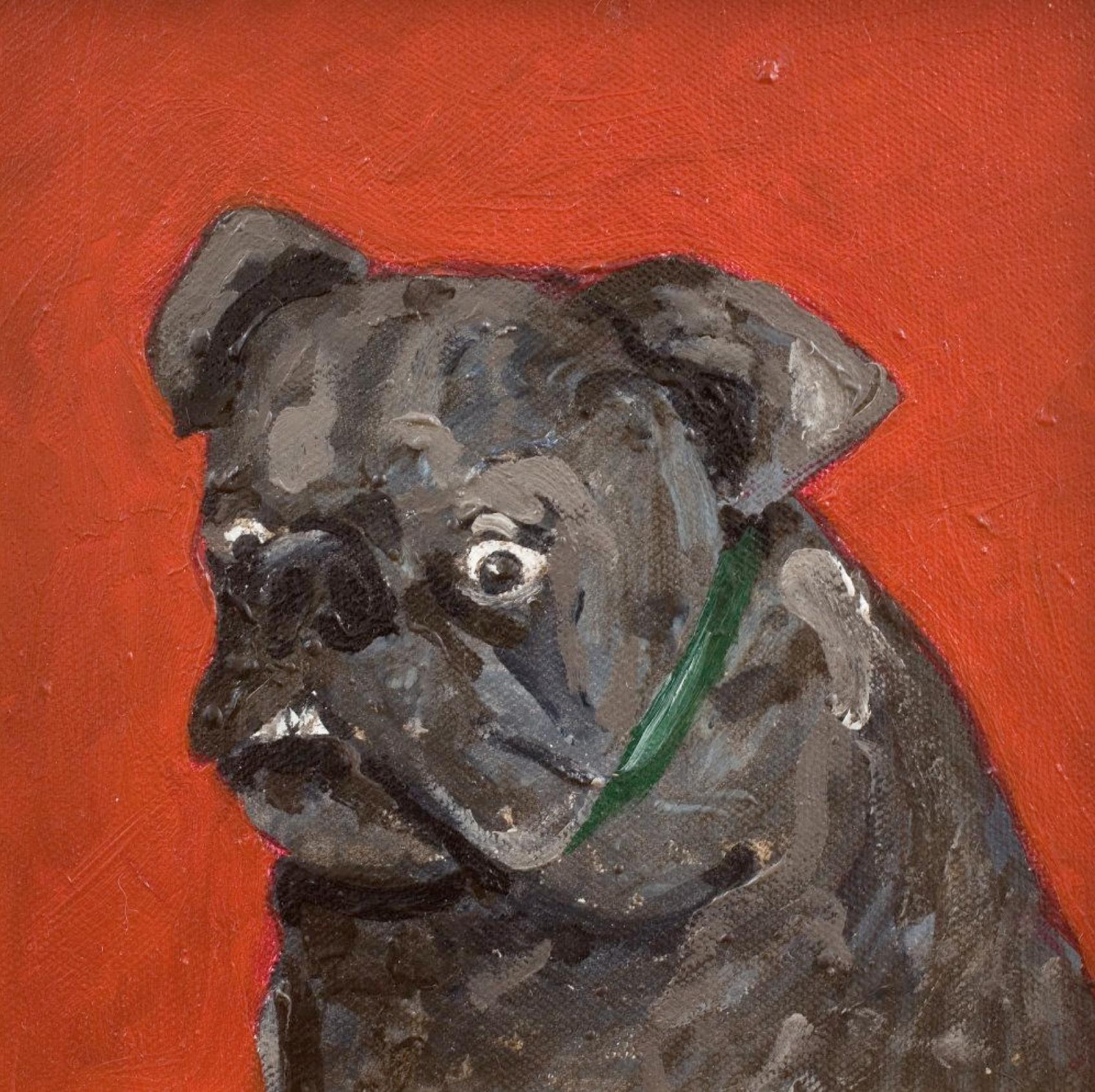 toby-dog-ab